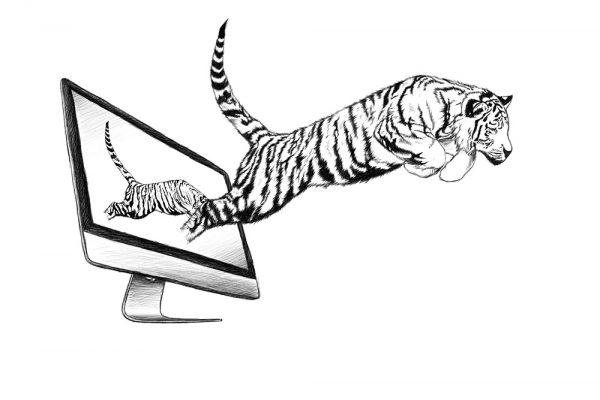 02_Monitor_Tiger_Illu_1000px