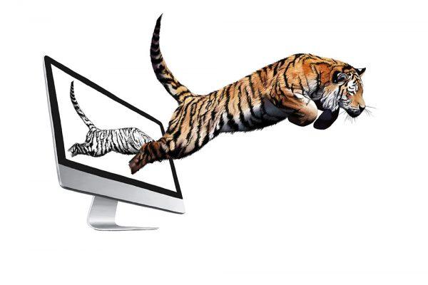 Illustration, Digital Painting Tiger - Realistische Darstellung