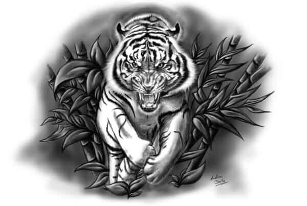 Illustration und Tattoo Fauchender Tiger, suche illustrator, Buchillustrator gesucht