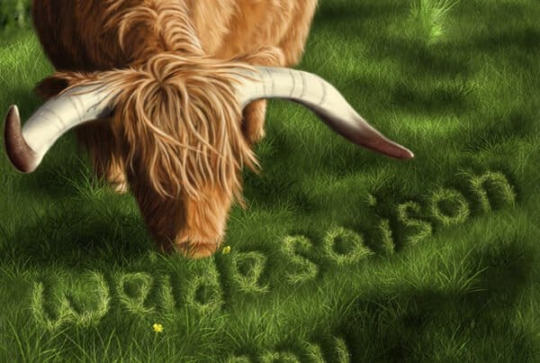 Cover Illustration Highland Cattle, Kinderbuch Illustrator gesucht, Kinderbuchillustrator gesucht, Kinderbuch illustrieren lassen, Kinderbuch erstellen lassen, Kinderbuchillustrator Andrea Baitz, Buchillustrator gesucht, Buch Illustrator, Kinderbuch Illustration, Kinderbuchillustration, Buchillustration, Buch Illustration, suche kinderbuchillustrator, suche illustrator, Andrea Baitz
