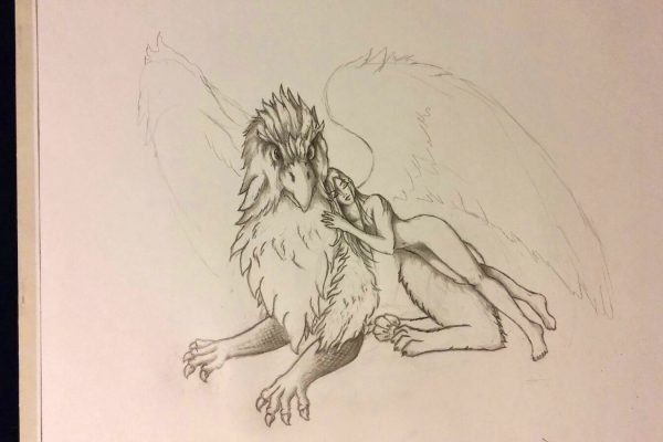 05_Illustration_Zeichnung_Gryphon_Lady
