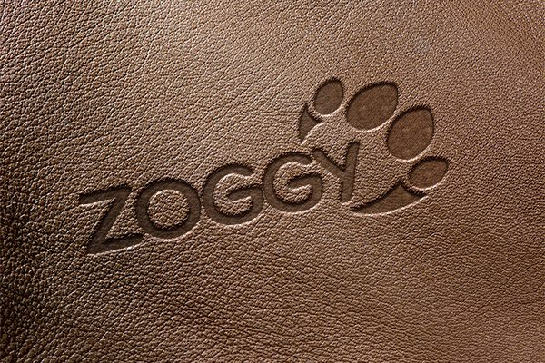 Zoggy Logo Design Leder