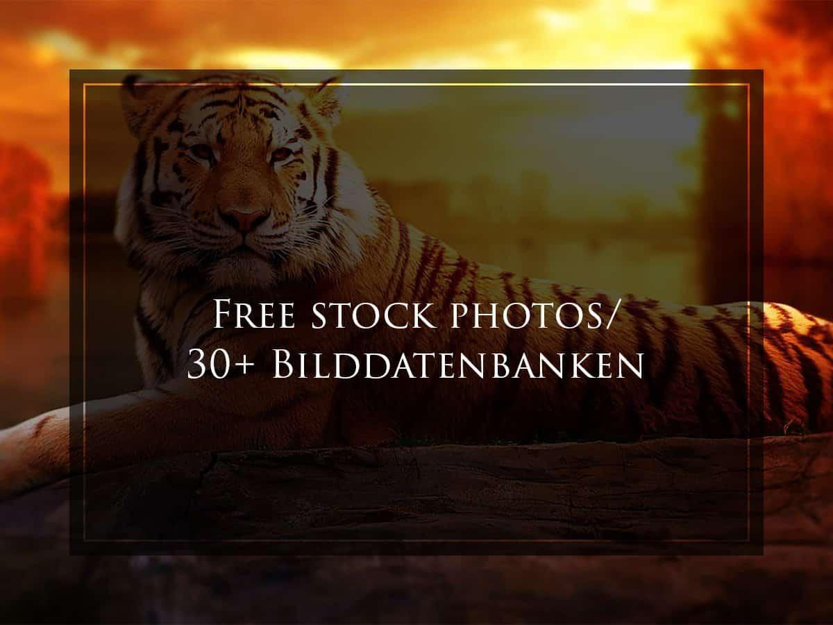 Free stock images, free stock photos, free stock pictures, kostenlose Bilddatenbanken, kostenlose Bilder, Lizenzfreie Bilder, stock photos free, free pictures